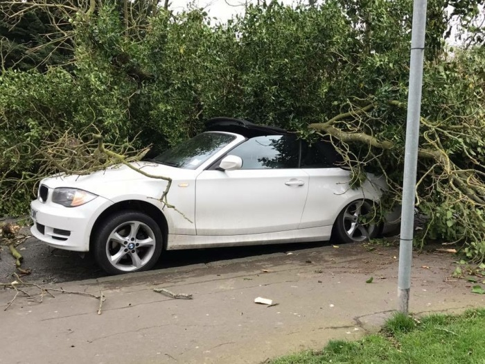 BMW Ht by Storm Doris